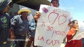 jornaleros de san quintin en huelga2(1)