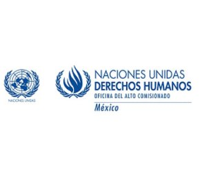 ddhh_mexico_logo