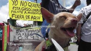 protestan contra construccion de gasolineria