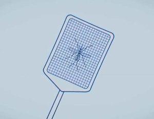 capturemosquitosbig